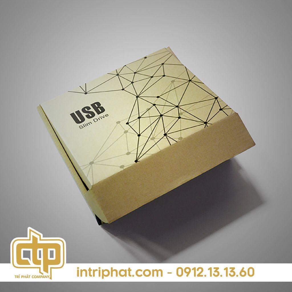hộp giấy kraft carton