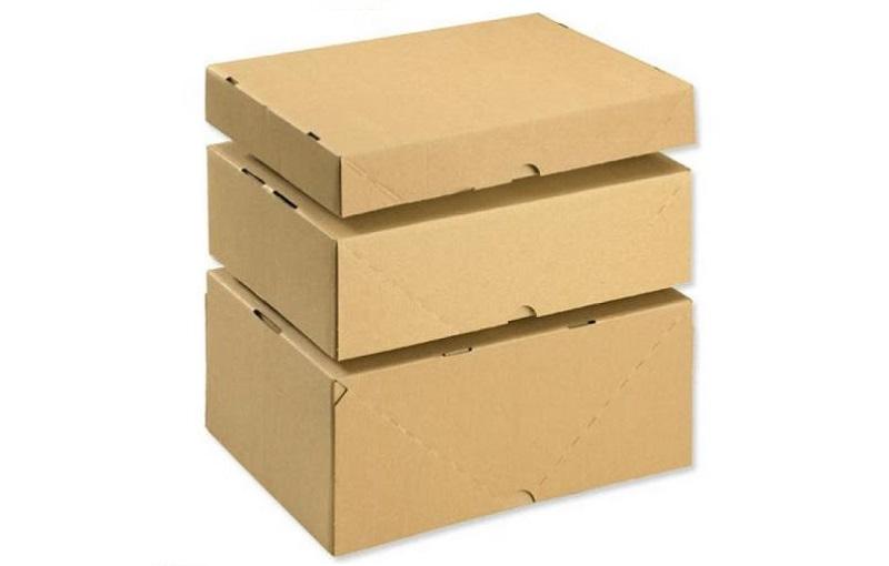 in hop carton (3)