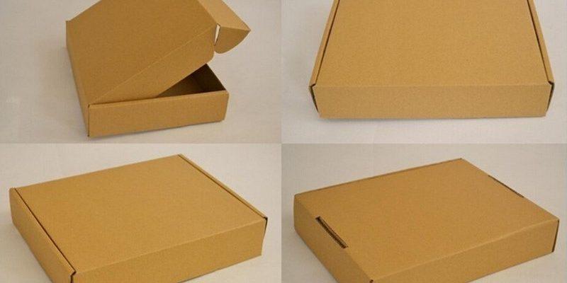 in hop carton (4)