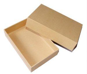 in hộp giấy kraft tái sinh